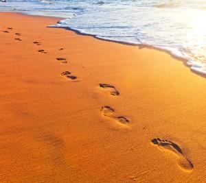 twr-footsteps