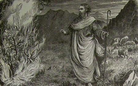 Moses, burning bush.