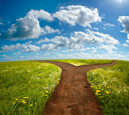 Picking Your Path