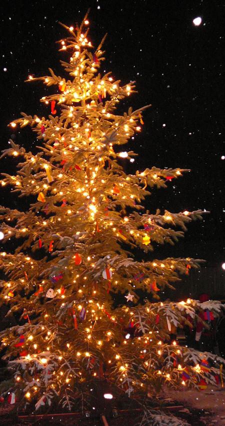 tree-lighting-1360046-639x1209crop